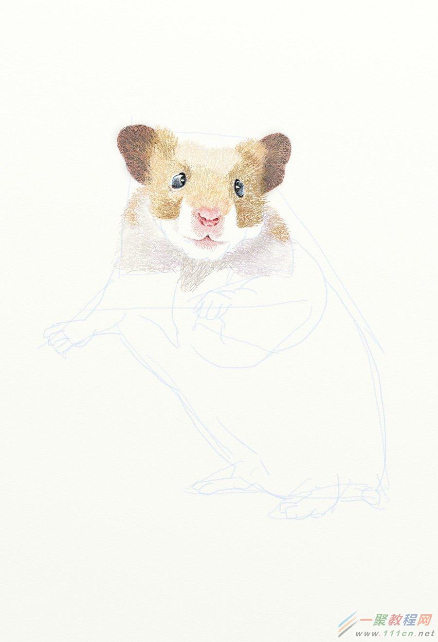 painter绘制一只可爱的老鼠 网管之家 painter教程